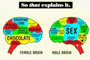 Marketing to the Female Brain